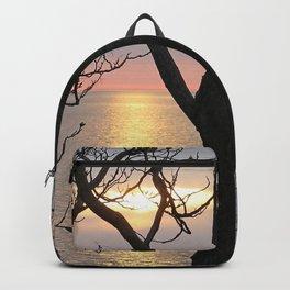 A Secret View Backpack