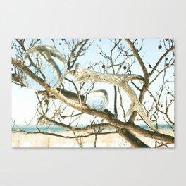 Wake Canvas Print