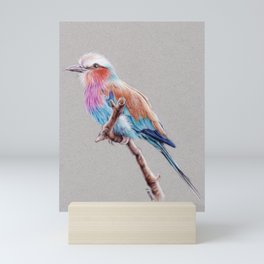 Lilac breasted roller colored pencil drawing Mini Art Print