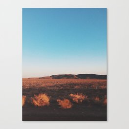 Desert Tranquility Canvas Print