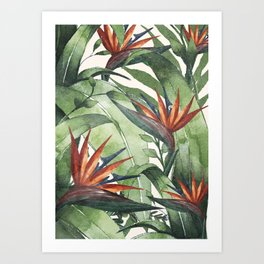 Tropical Flora I Art Print