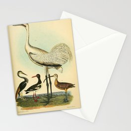 Louisiana Heron, Pied Oyster-catcher, Hooping Crane, Long billed Curlew7 Stationery Cards