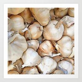 Garlic bulbs Art Print