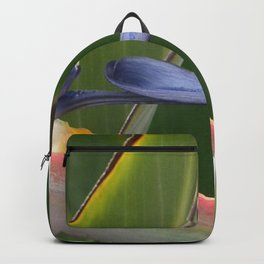 Exiting Paradise Backpack