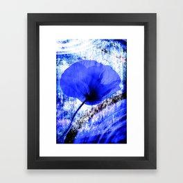 Blue Poppy vintage 222 Framed Art Print