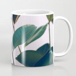 Ficus Elastica #4 Coffee Mug
