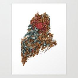 Maine (intertidal zone) Art Print
