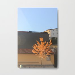 Yellow tree in the city Metal Print
