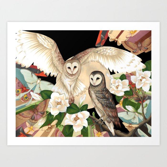 Owls + Moths Kunstdrucke