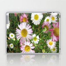 Daisies in the Grass Laptop & iPad Skin