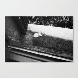 SOAP MEETS SNOW Canvas Print