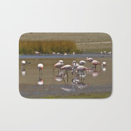 Chilean Flamingo (Phoenicopterus chilensis) Bath Mat