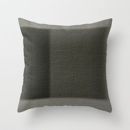Building Democracy Throw Pillow