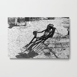 Sunbathing Frog Metal Print