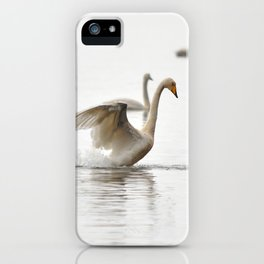 Swans. iPhone Case