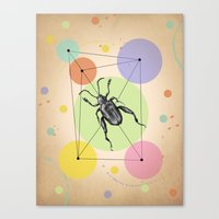 bug Canvas Prints featuring bug by mark ashkenazi