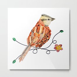 Bird of Costa Rica, comemaiz Metal Print