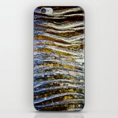 Pandanus iPhone & iPod Skin