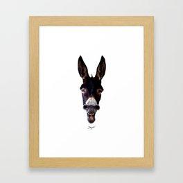 Laughing Donkey Framed Art Print