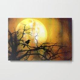 Raven's Moon-Barbara Chichester Metal Print