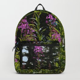 Heather Alpine Flowers Mountains Alps Backpack
