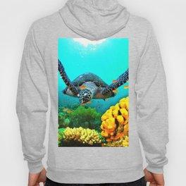 Turtle in Water Hoody