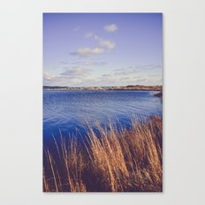 Northern Seas Canvas Print