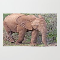 baby elephant Area & Throw Rugs featuring Baby Elephant by Lynn Bolt