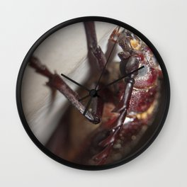 Crazy Eyes!  Wall Clock