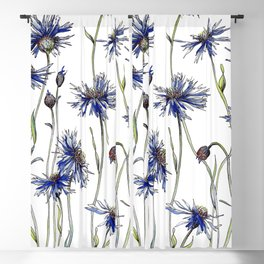 Blue Cornflowers, Illustration Blackout Curtain