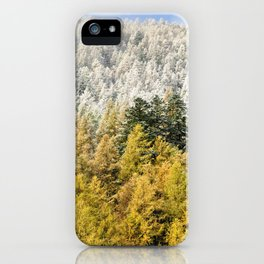 Colours Of The Forest iPhone Case
