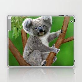 Blue-eyed Baby Koala Bear Laptop & iPad Skin