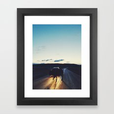 Bison in the Headlights Framed Art Print