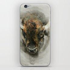 Plains Bison iPhone & iPod Skin