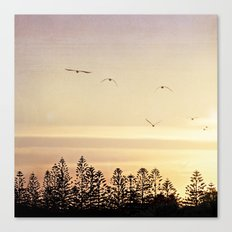 A beautiful day's end Canvas Print