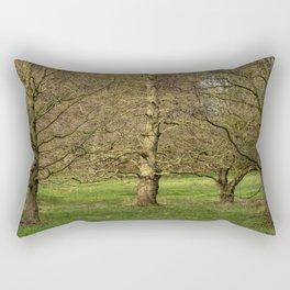 Winter Trees in the Park Rectangular Pillow