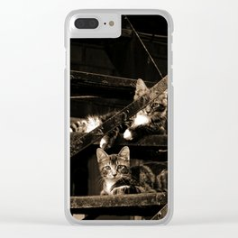 Back street Cats Clear iPhone Case