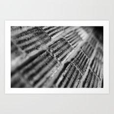 {texture} Art Print