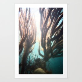 Deep Blue Reef Art Print