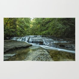 Ledge Falls, No. 2 Rug