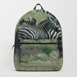 Wild Zebras Grazing, Omo river valley, Ethiopia, Africa Backpack