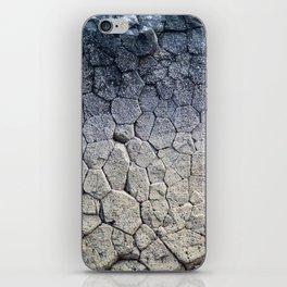 Nature's building blocks iPhone Skin