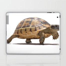 Marching Baby Tortoise Cartoon Vector Isolated Laptop & iPad Skin