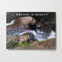 Nature is Beauty Metal Print