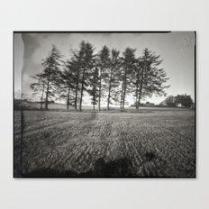 Pinhole Trees Canvas Print