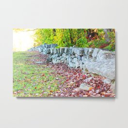 Secret path Metal Print