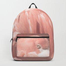 Group Nap Backpack