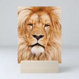 Lion Portrait Photograph Mini Art Print