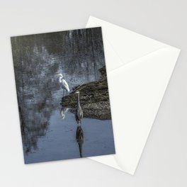 Reflections of My Feathered Friends Stationery Cards