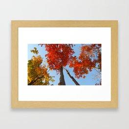 Famous fall 7 Framed Art Print